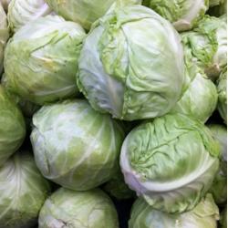 Cabbage Muttaigose 1kg
