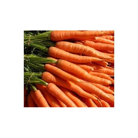 Carrot Approx. 500g