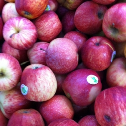Fresh Red Juicy Apples