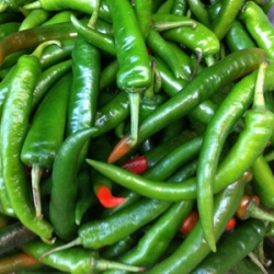 Green chilli big 100g
