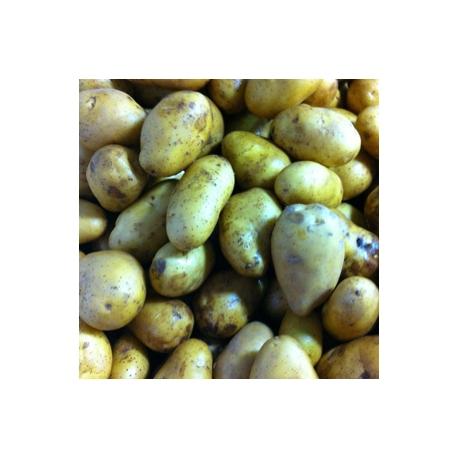 Onion 5kg Bag + Potato 5kg Box