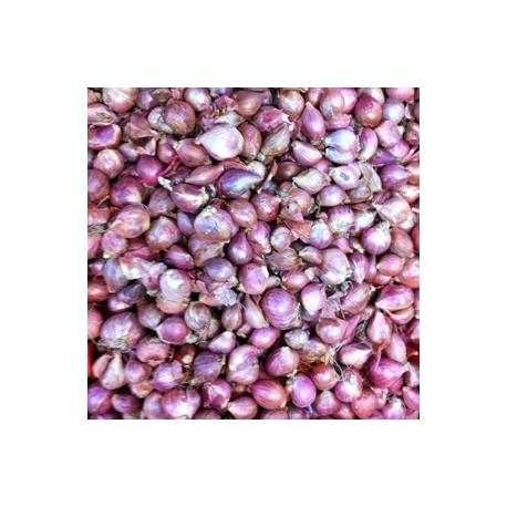 Shallots Small Onions 500g