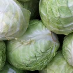 Cabbage Muttaigose 500g