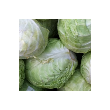 Cabbage Muttaigose 500g