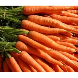 Carrot Approx. 1kg