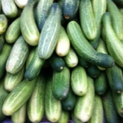 Cucumber 500g
