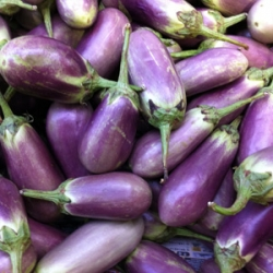 White - Purple Medium Brinjal 500g