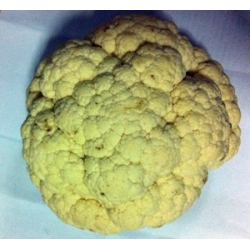 Cauliflower Approx 500g