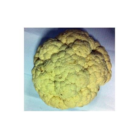 Cauliflower Approx 500g