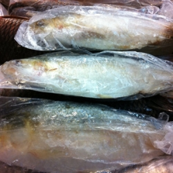 Frozen Katla Fish Approx 2kg Whole