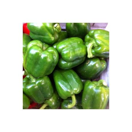 Green Capsicum 500g